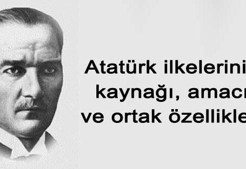 Atatürk ilkelerinin amacı ve ortak özellikleri